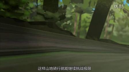 禧玛诺Shadow RD+