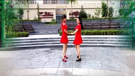 双人对跳广场舞《路边的野花不要采》教学演示