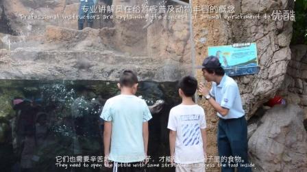 动物丰容:水獭究竟是一种怎样的生物?