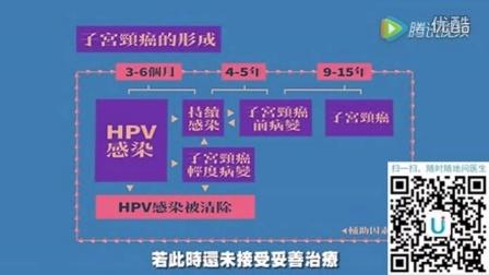 hpv11阳性是什么病