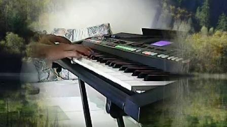 S650电子琴弹唱【风含情水含笑】