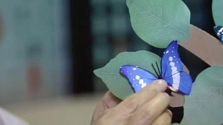 【新片场】蝴蝶树