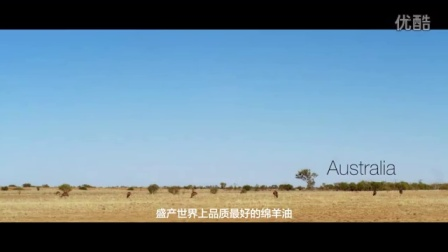 G&M澳芝曼绵羊油 澳洲第一 原装进口