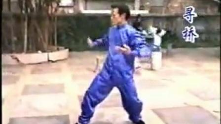 咏春拳术经典函授教程