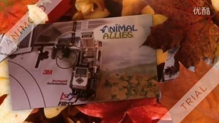 FLL Animal Allies  动物之友