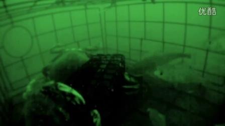 钓蟹视频 水下蟹笼抓螃蟹实录