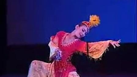 优美维族舞蹈《花儿为什么这样红》