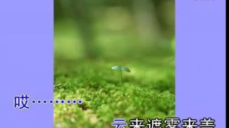 刘紫玲 - 珊瑚颂1 - 慢四阿冰Dj舞曲