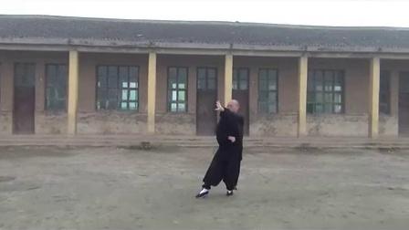 (新版)杨式太极拳85式全套背向演练   永年李占英_标清