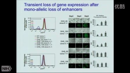 The 3D genome organization and long-range control of gene expression