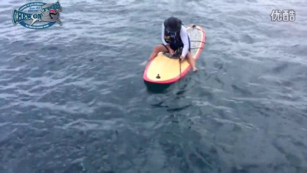 First Time Ever! Angler fishing catches huge fish from a SUP paddleboard