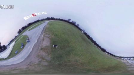 VR看狗狗