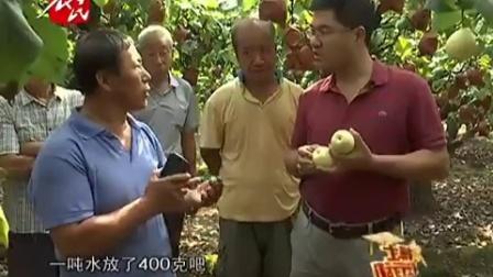 鸭梨果面不好为哪般_农博士在行动_农民频道
