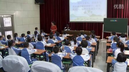 小学二年級語文优质课展示《浅水洼里的小鱼》人教版冯老师