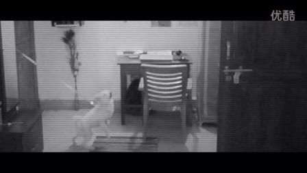 闹鬼的人家进了小偷结果被吓跑了