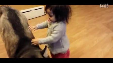 【幽默学】狗狗和萌娃相处的一天,好可爱!