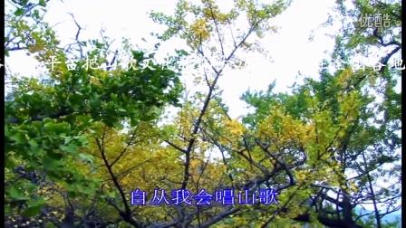 贵州山歌-哥哥是个马摆人(陈俊、王艳、吴琴琴)云南山歌