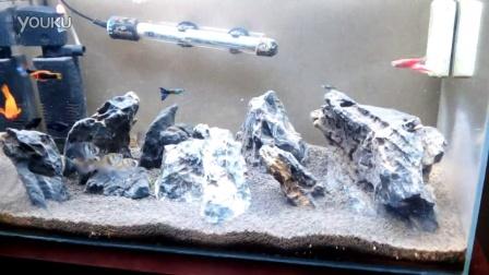 超白玻璃缸青龙石造景鱼缸