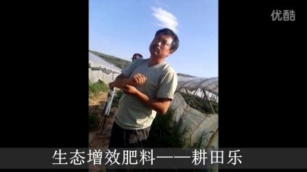 赤峰市松山区猴头沟 圆辣椒—耕田乐