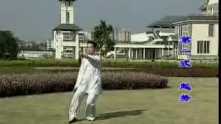 陈式太极剑49式教学(一)王二平