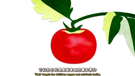 煎蛋小学堂:长斑的果蔬还能吃吗?
