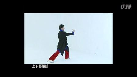 罗子真太极拳教学视频-传统杨氏太极拳三十八式教学