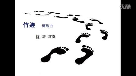 竹迹   谭盾  曲   陈涛 演奏