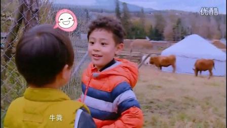 爸爸去哪儿第四季完整版:蔡国庆被儿子暖哭 阿拉蕾频曝金句不输甜馨高清