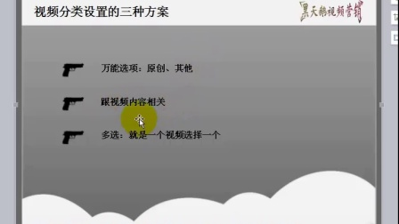 03 视频分类设置的三种方案-黑天鹅视频营销