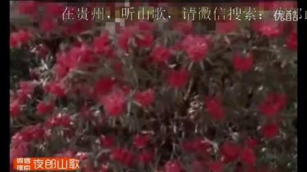 贵州夜郎山歌-心中时时挂小郎-织金山歌