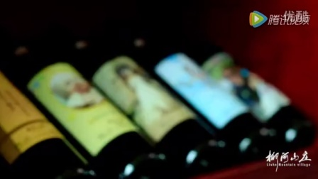酒吧自助餐鸡尾酒批发干红葡萄酒团购茅台红酒柳河山庄系列品牌张裕长城