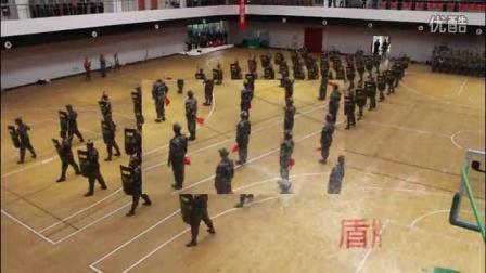 南京交通职业技术学院2016届军训汇报表演