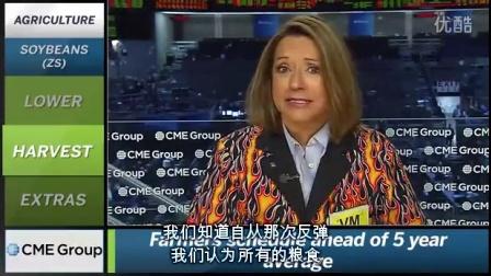芝商所市场评论- 财经视频 2016 年11月1 (晚)