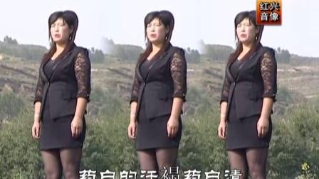 青海花儿—《柔情花儿把心牵》王秀专辑