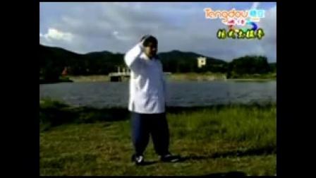85式杨式太极拳教学_baofeng