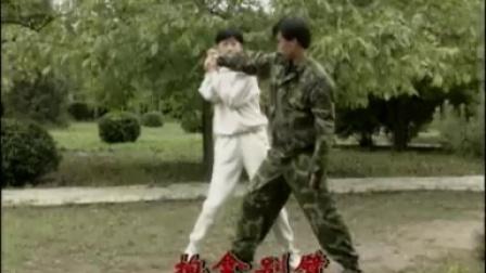 【擒拿格斗散打】搏斗-一招制敌(1)