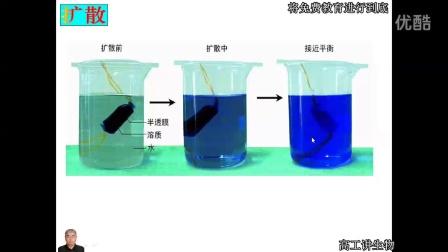 高工讲生物高一生物必1修高中生物分子与细胞第4章细胞的物质输入和输出第3节物质跨膜运输的方式