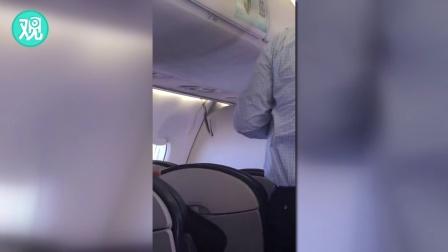 飞机上迎来不速之客 蟒蛇登机吓坏旅客