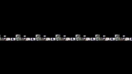 [360度VR全景视频]横梁360:音乐-英国广播公司新闻_VR资源网