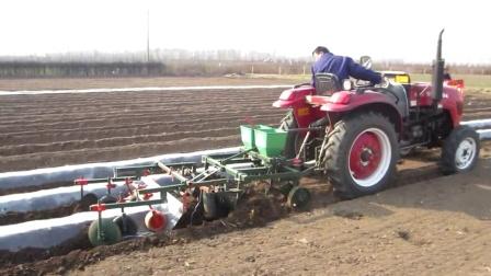 山芋起垄覆膜机 甘薯甜薯起垄覆膜机 红薯种植机