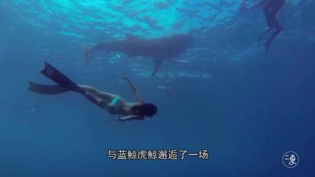 如此美丽的海底 让你忘了呼吸 655