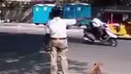 印度交警帮助汪星人过马路