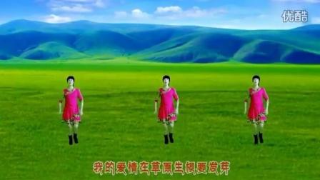广场舞~火辣辣的大草原