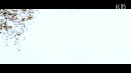 《前往并离开》插曲 Beatsteaks - I Never Was