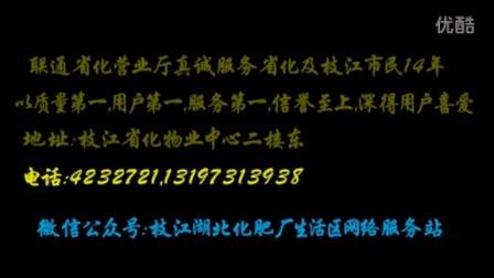 爱剪辑-2016湖北省枝江市菊花展-音乐超好听