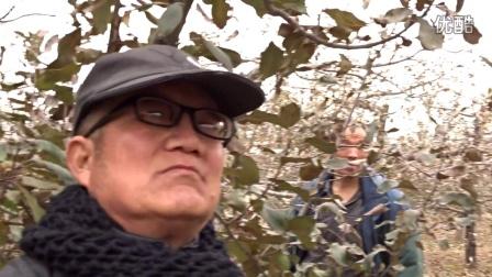 袁氏农业服务团在高阳镇举办苹果冬季修剪培训会