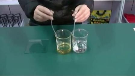 小学科学 水和食用油的比较