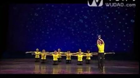 舞蹈家协会考级_第10级_11_萤火虫小夜曲-中舞网[wudao.com]