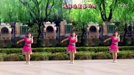 【海南SEO】广场舞《就爱广场舞》含(背面)分解教学