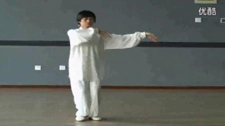 八十五式杨氏太极拳教学视频_太极拳图片素材_李德印太极拳教程免费下载